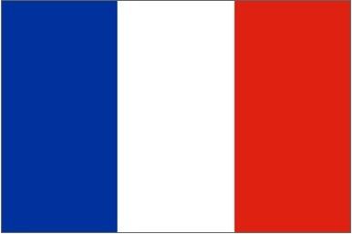 FRENCH INTERPRETATION